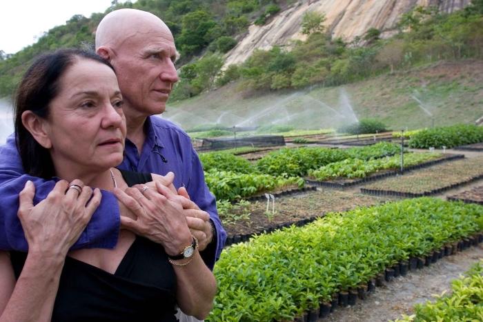 Бразильский фотограф и его жена умудрились восстановить 600 га леса – даже дикие животные вернулись домой