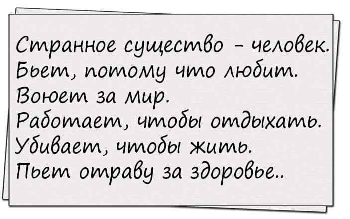 Анекдот про Вовочку и новый год